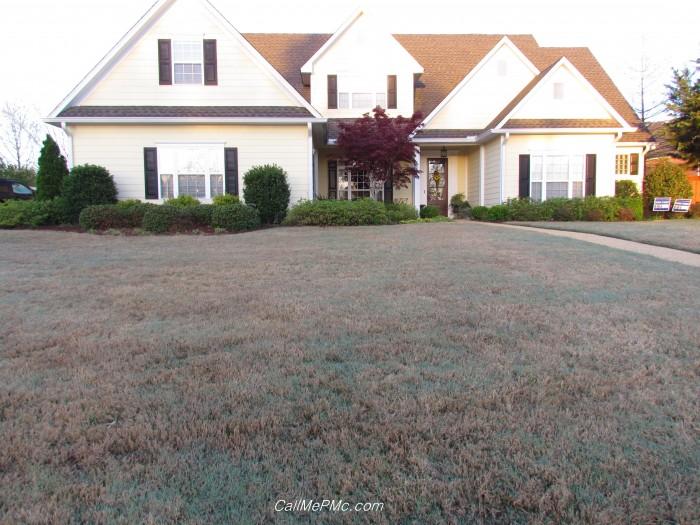 hc grass1