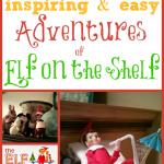 500+ Adventures of Elf on the Shelf
