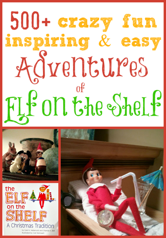 500+ Adventures of Elf on the Shelf
