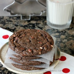 Chocolate Peppermint Chip Cookie