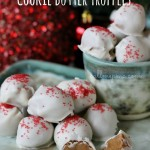 Three Ingredient Cookie Butter Truffles
