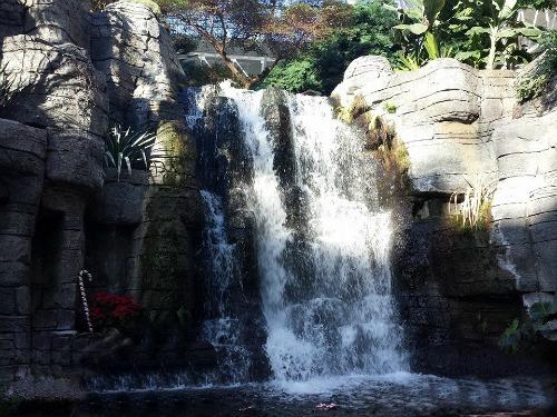 waterfall Gaylord Opryland Resort