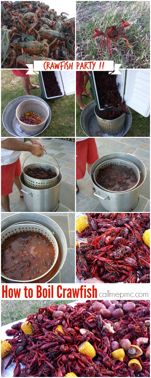 Crawfish Party How To from callmepmc.com