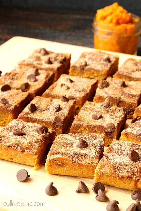 Chocolate Chip Pumpkin Snickerdoodle Blondies