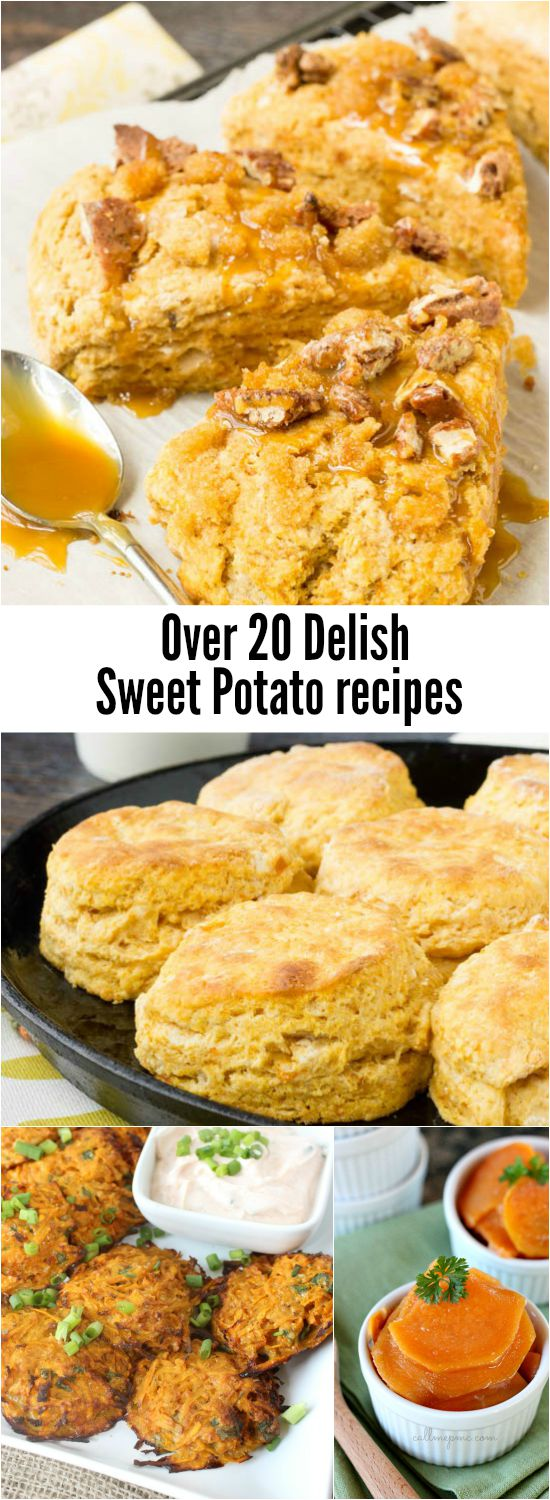 20+ Sweet Potato Recipes from traditional casseroles to unexpected recipes, you'll find over 20 tasty sweet potato recipes here!
