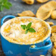 Caramelized Vidalia Onion Dip Recipe
