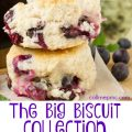 The Big Biscuit Recipe Collection