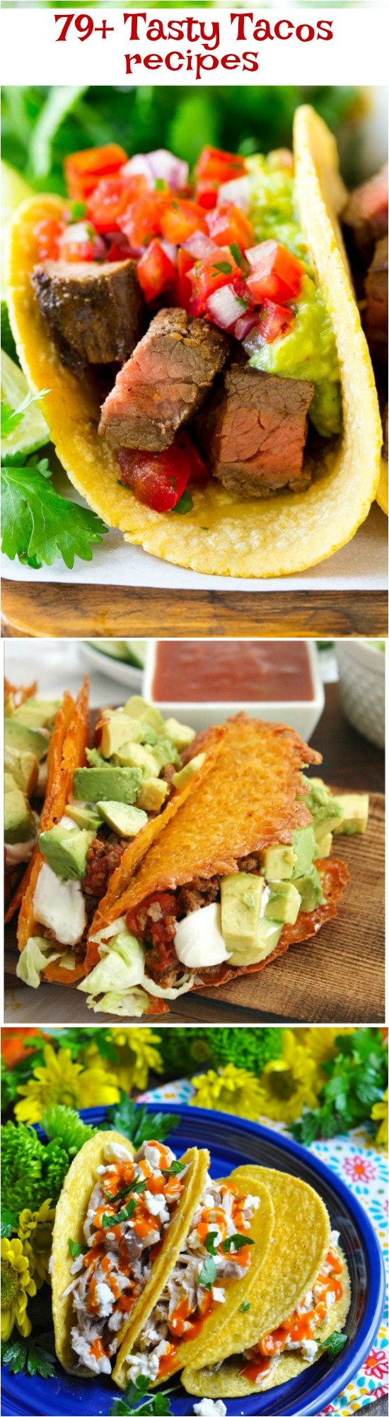 Tasty Tacos 79+ Ways for easy weeknight meals or gourmet entertaining, there's a recipe in this collection for you!