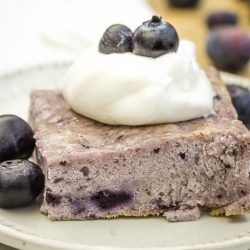 Angel Food Fat-Free Blueberry Cake recipe