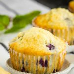Small Batch Blueberry Muffin Recipe