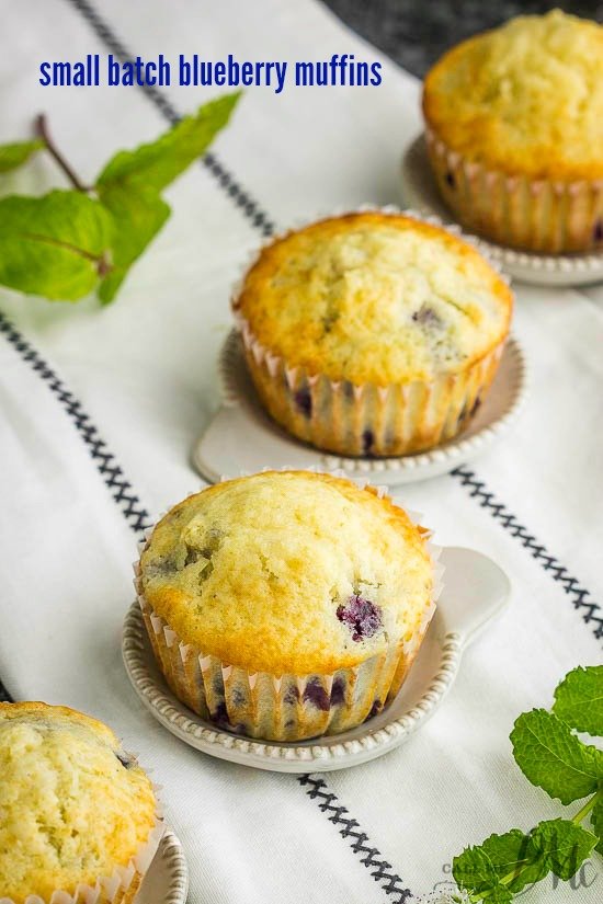 Small Batch Blueberry Muffin Recipe is tender, soft, moist, with lots of blueberries. A fabulous recipe for two people! #blueberry #muffin #recipe #smallbatch #fortwo #makes6 #onebowl