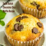 Small Batch Chocolate Chip Muffin Recipe quick bread