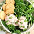 CRABMEAT AND SHRIMP SALAD RECIPE