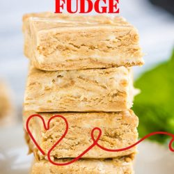 2 Ingredient Cookie Butter Fudge is a no-bake fudge recipe made from cookie butter and frosting. It's quick, simple, and out-of-this-world delicious!! #fudge #gifts #homemade #cookiebutter #frosting #2ingredient #recipe #reicpeoftheday #callmepmc