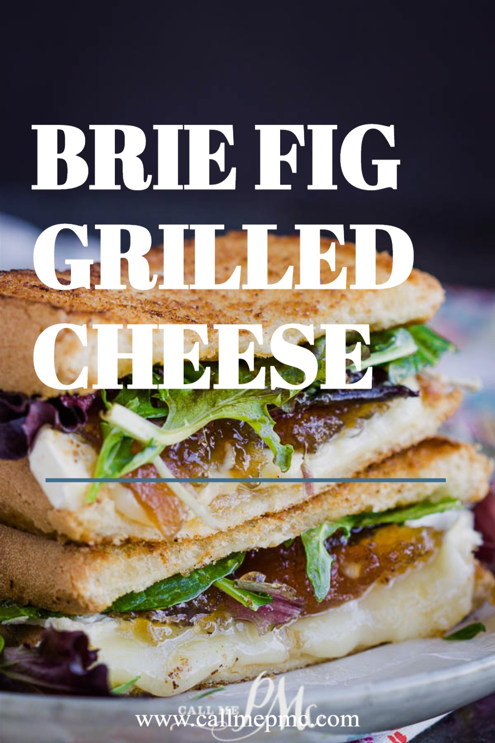Brie Fig Grilled Cheese - Gourmet grilled cheese sandwich oozing with melted brie cheese and fig preserve nestled between buttery bread! It's out-of-this-world good!